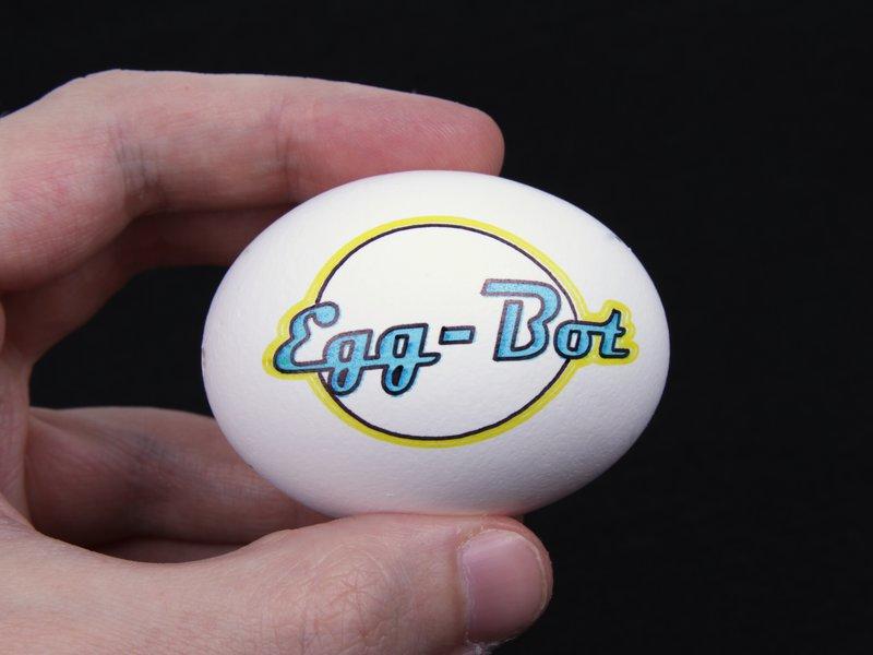 EggBot Logo on an Egg