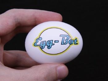 Finished egg example